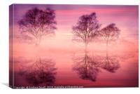 Pink Fog, Canvas Print