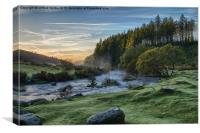 Bellever Forest Dartmoor, Canvas Print