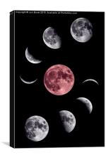 Moon Collage, Canvas Print