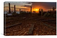 Worthing  Waterwise Garden at Sunset  , Canvas Print