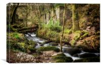 Kennall Vale Gunpowder Mills, Canvas Print