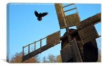 Crow and windmill, Weald and Downland Museum, Sus, Canvas Print