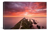 Nugget Point, Canvas Print