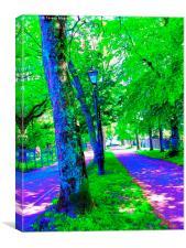 Pschadellic Avenue of Trees, Canvas Print