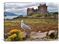 Eilean Donan Castle, SCOTLAND, Canvas Print