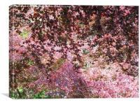 Springtime in Saundersfoot , Canvas Print