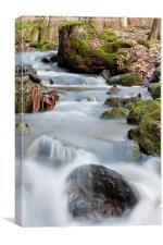 Flieden, Hessen, Germany, Creek, Water, Flow, Canvas Print