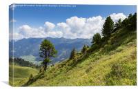 Riesneralm, Schladming, Donnersbachwald, Dachstein, Canvas Print