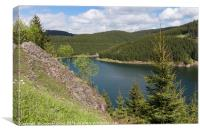 Barrier Lake near Tambach-Dietharz, Canvas Print