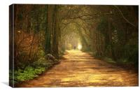 A quiet country lane in the North West of England, Canvas Print