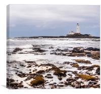 St Mary's Lighthouse from afar, Canvas Print