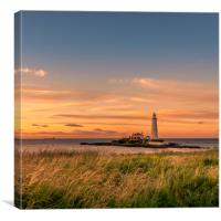 Welcoming the Warmth to our Shores, Canvas Print