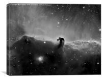 Horsehead Nebula in Black and White, Canvas Print