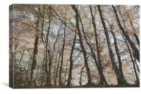 Painted Trees, Canvas Print