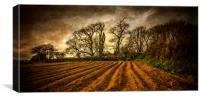 Autumn Field, Canvas Print