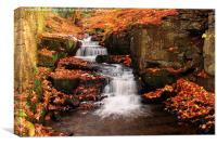 Lumsdale waterfalls near Matlock,Derbyshire, Canvas Print