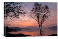 Loch Sunart at dawn, near Salen, Canvas Print