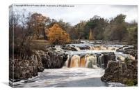 Low Force Upper Teesdale, Canvas Print