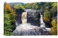 High Force Teesdale County Durham England, Canvas Print