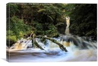 Catrigg Force Waterfall in Early Autumn Yorkshire , Canvas Print