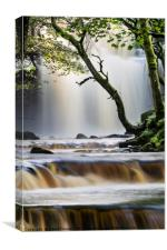 Summerhill Force, Bowlees, Teesdale, County Durham, Canvas Print