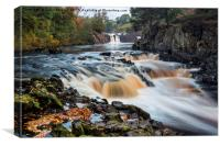 Autumn Colours, River Tees, Low Force, Teesdale, Canvas Print