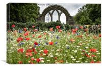 Wild Flower Garden, , Middleton-in-Teesdale, Canvas Print