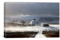 Remote Farm With Wind Blown Snow , Canvas Print