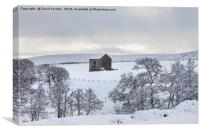 Traditional Dales Barn in Snow, Upper Teesdale, , Canvas Print