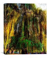 autumnal tree, Canvas Print