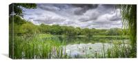 Fishing pond, Canvas Print