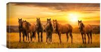 Horses at sunrise, Canvas Print