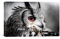 Eurasian eagle owl , Canvas Print