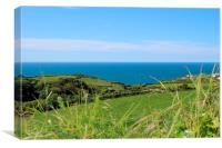 Cornish coastline in Summer, Canvas Print