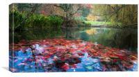Autumn Pond, Canvas Print