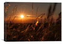 Sunset Over Epsom, Canvas Print