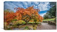 Autumn in Surrey, Canvas Print