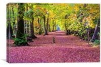 autumns red carpet, Canvas Print
