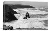 Crow by the Sea, Canvas Print