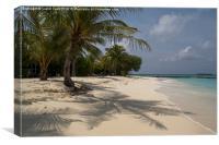 Palm lined beach, Canvas Print