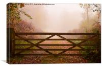 Beyond the Gate..., Canvas Print