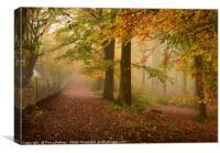 Woodland Pathway, Canvas Print