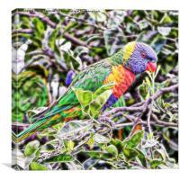 abstract rainbow lorikeet on branch, Canvas Print
