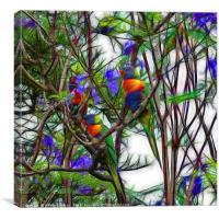 Abstract Beautiful Rainbow Lorikeets, Canvas Print
