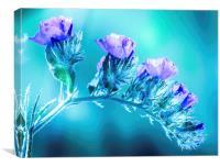 Violet flowers , Canvas Print