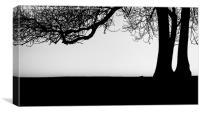Complex simplicity, Canvas Print
