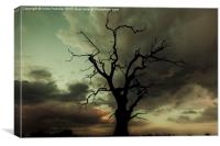 Silhouetted, Canvas Print