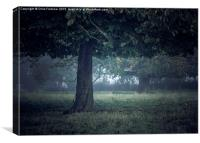 On a cool dark morning, Canvas Print