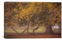 Autumn arrives, Canvas Print