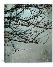Winter Days, Canvas Print